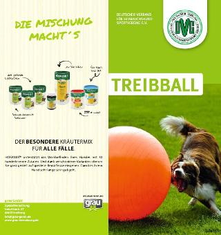 dvg_flyer_treibball_hp_titel.jpg