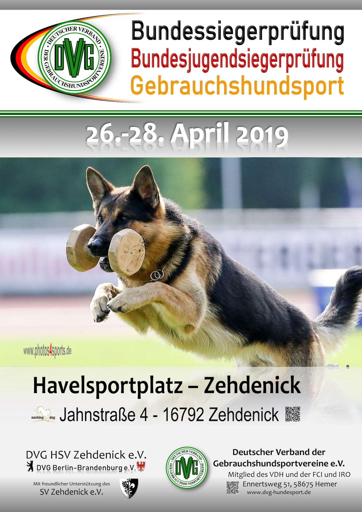 DVG Bundessiegerprüfung Gebrauchshundsport 2019 @ Havelsportplatz Zehdenick