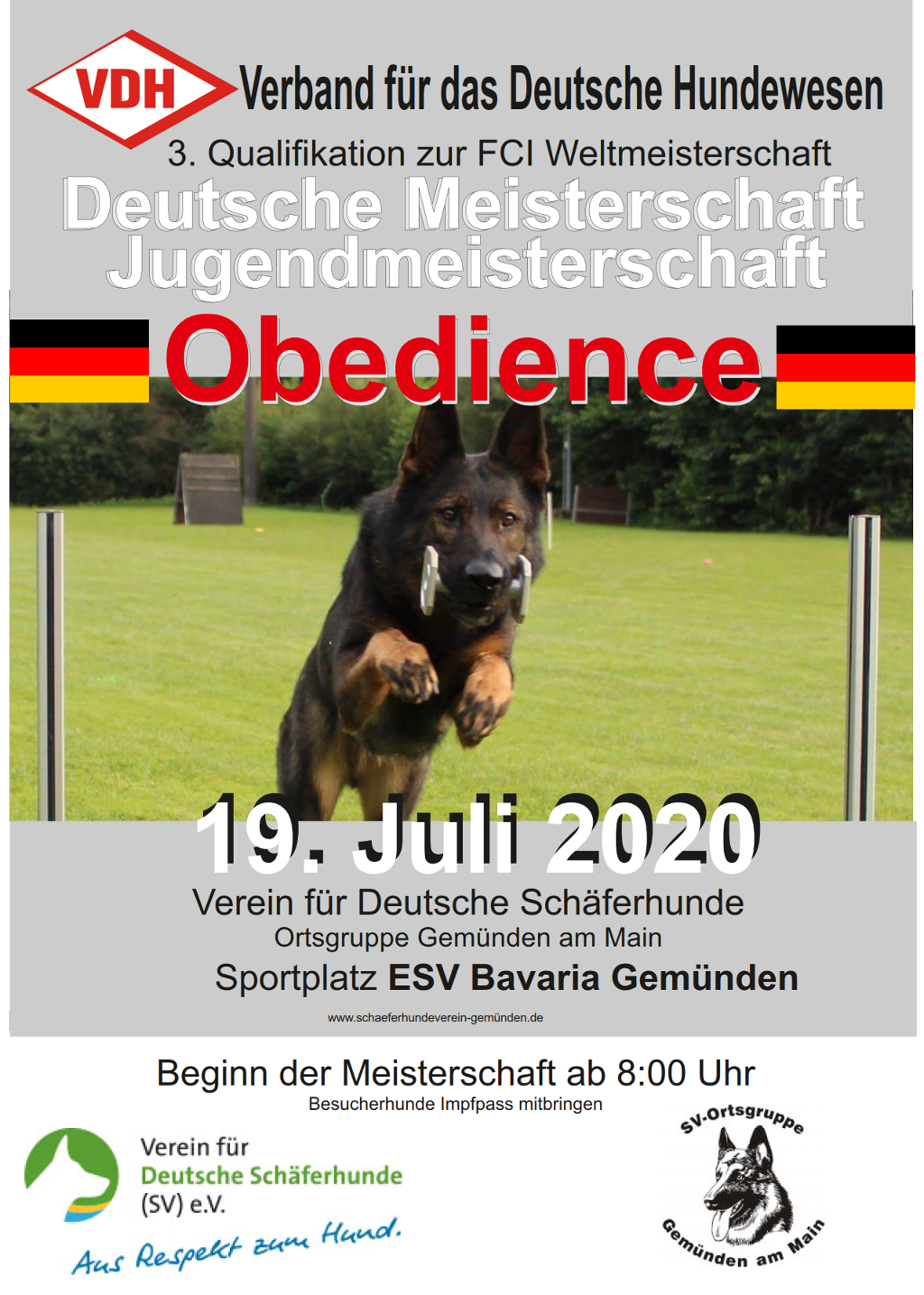 VDH DM Obedience 2020